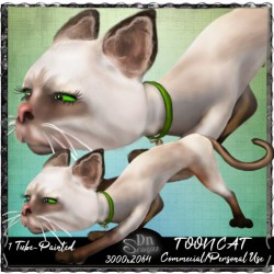 Toon cat painted